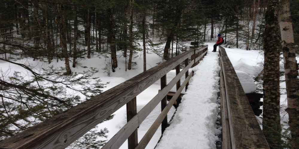 Bridge to Mt Moosilauke trailhead